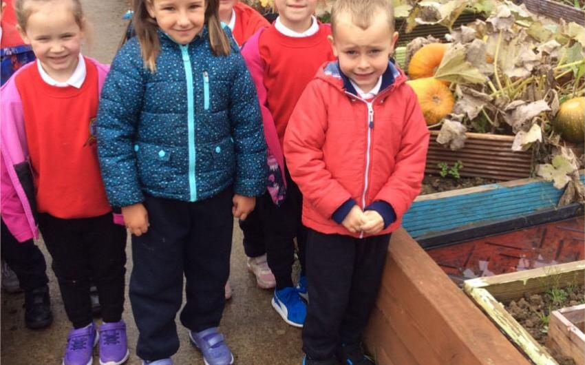 Pupils in the school garden - photo 1